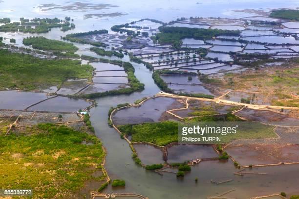 Philipins, Cebu City. Cebu Island. Mactan Island. Kalawisan
