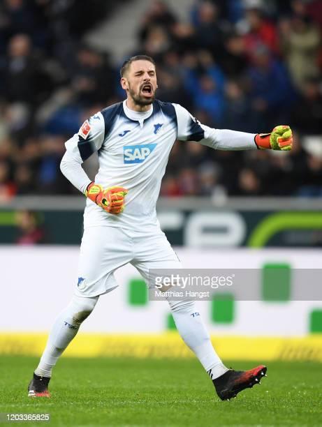 Philipp Pentke of TSG 1899 Hoffenheim celebrates as Andrej Kramarić of TSG 1899 Hoffenheim scores his sides first goal during the Bundesliga match...