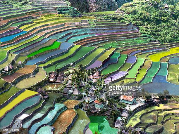 philippines luzon - philippines stock pictures, royalty-free photos & images