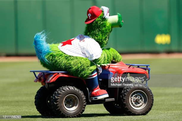 Phillie Phanatic drives on the field prior to the game between the Philadelphia Phillies and the Boston Red Sox during a Grapefruit League spring...