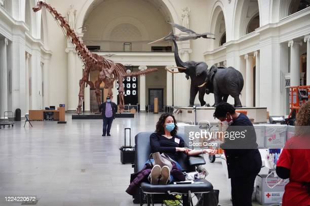 Phlebotomist Lakisha Mason draws blood from Sarah Ference during an American Red Cross blood drive held at the Field Museum of Natural History on May...
