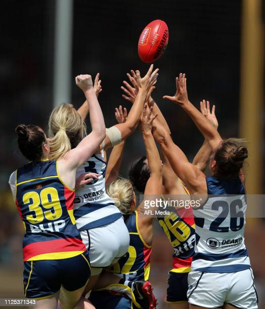 Phoebe McWilliams and Madeline Boyd of the Cats fly with Sarah Allan Marijana Rajcic and Chelsea Randall of the Crows during the 2019 NAB AFLW Round...