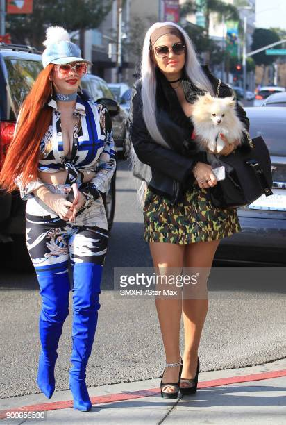Phoebe Price and Sophia Vegas Wollersheim are seen on January 2 2018 in Los Angeles CA