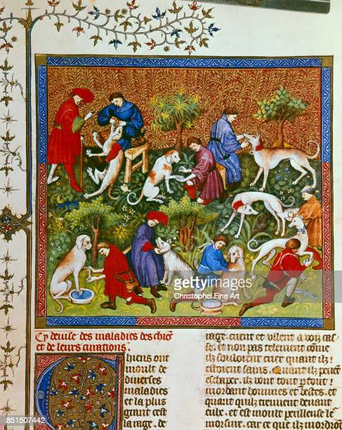 Phoebus Gaston Gaston III Phoebus Count of Foix aka Medieval Hunting Scene Wolf Hunting Paris Bibliotheque nationale
