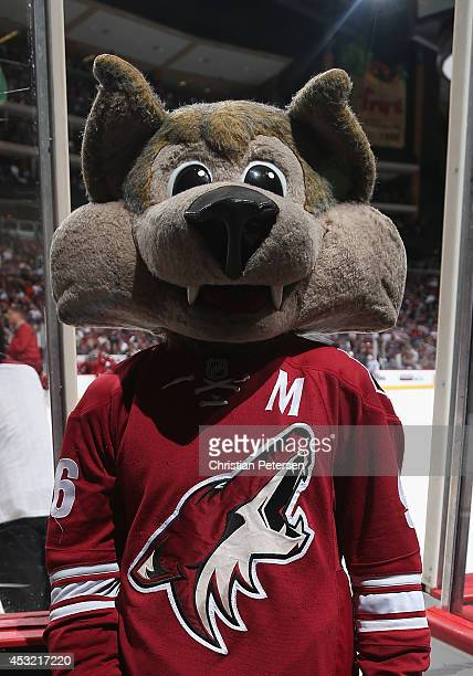 Phoenix Coyotes mascot 'Howler' performs during the NHL game against the Edmonton Oilers at Jobingcom Arena on April 4 2014 in Glendale Arizona The...