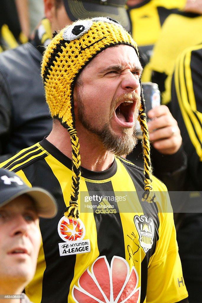 A-League Rd 17 - Wellington v Melbourne : News Photo