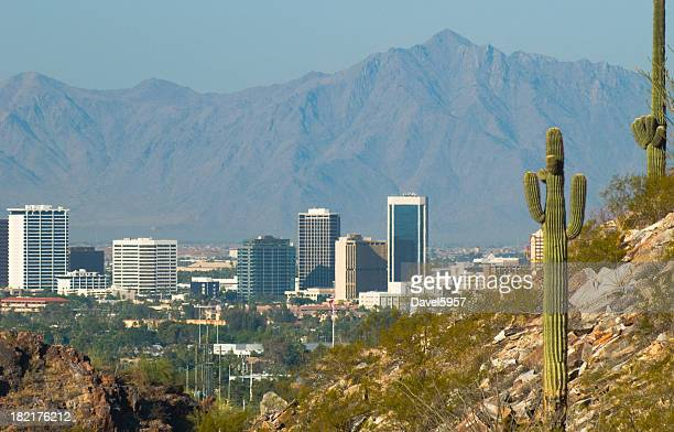 phoenix skyline and cactus - phoenix arizona stock photos and pictures