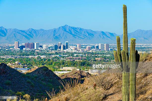phoenix skyline framed by saguaro cactus and mountainous desert - phoenix arizona stock pictures, royalty-free photos & images