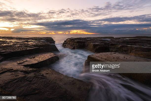 phoenix tail. seascape morning. - países del golfo fotografías e imágenes de stock