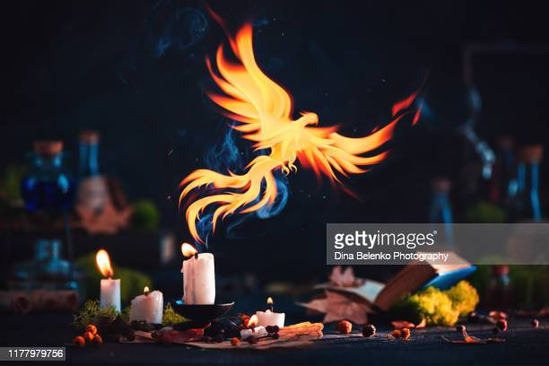 phoenix with a magical candle. fantasy artifact photography. dark still life with copy space. - phoenix bird stock pictures, royalty-free photos & images