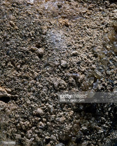 Phosphorite sedimentary rock