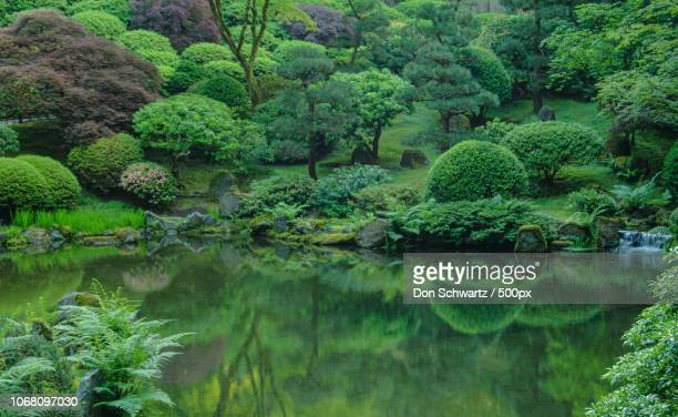 photo by: don schwartz / 500px - 日本庭園 ストックフォトと画像