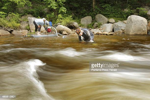Photo by Gregory Rec/Staff Photographer Rosey Susbury left and Charlie Smith work the Swift River in Byron seeking what Susbury holds above gold...