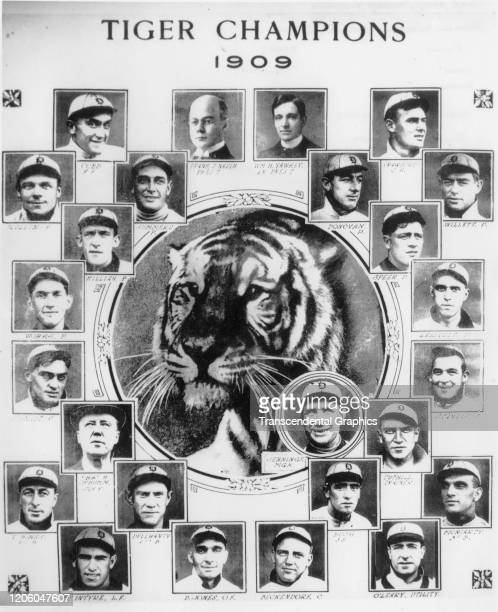 Photo collage depicts members of the Detroit Tigers baseball team, arranged around a picture of a tiger, Detroit, Michigan, 1909. Pictured are, left...
