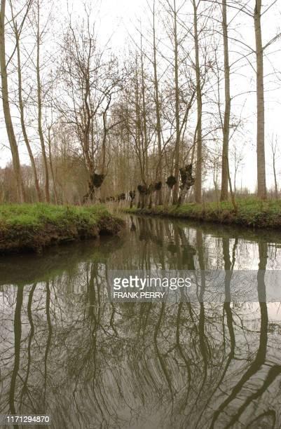 Photo des canaux du Marais Poitevin appelé aussi la Venise Verte prise le 23 Mars 2007 à Coulon AFP PHOTO FRANK PERRY