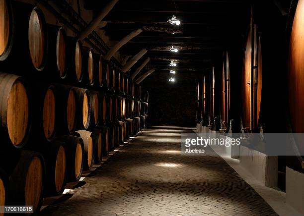 Photo down row in wine cellar showing multiple barrels