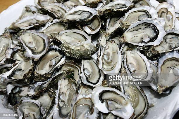 Photo d'un plateau d'huîtres du bassin d'Arcachon, ouverte par les conchyliculteurs qui vont les déguster le 18 mai 2006 lors d'une opération...