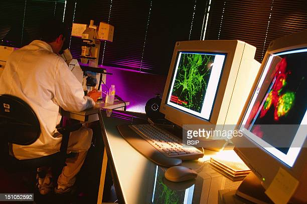 gene therapy stock photos and pictures getty images photo essay from laboratory genetics research laboratory gene therapy requires a gene drug and a vector