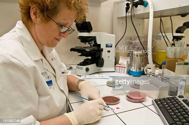 Photo Essay In A Laboratory Saint Louis Hospital Paris France Department Of Bacteriology Of Dr Francois Simon A Coagulase Test Is Undertaken To...