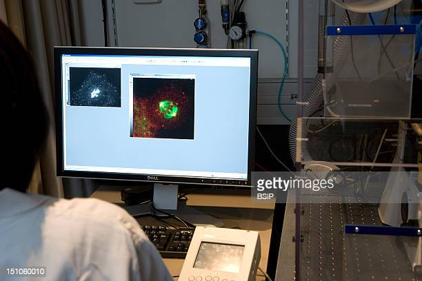Photo Essay In Curie Institute At Nikon Imaging Centre Paris France In Vivo Photonic Imagery Platform For Biomedical Research To Observe Alive...