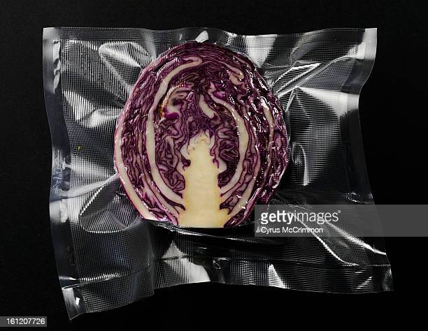 Photo illustration of a Sous Vide a new kitchen cooking device on Thursday May 5 2011 Food is sealed in plastic and cooked in this machine Food...