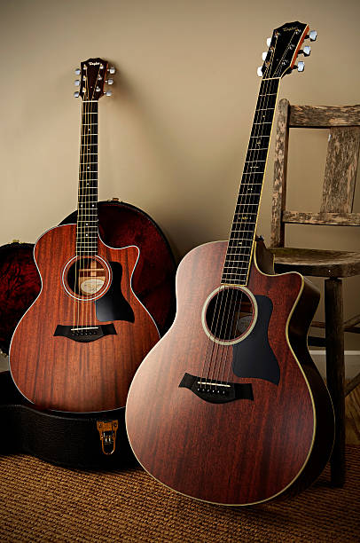 Taylor 500 Series Electro-Acoustics