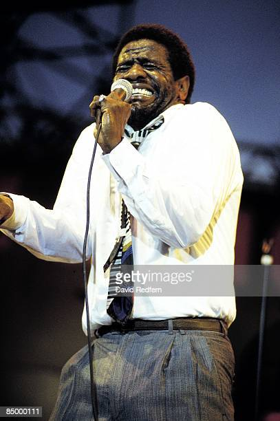 FESTIVAL Photo of Al GREEN performing live onstage
