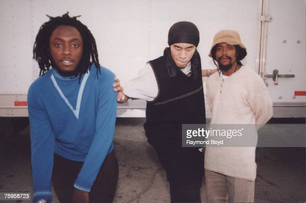 Photo of Black Eyed Peas