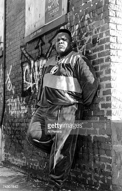 Photo of Chubb Rock Photo by Al Pereira/Michael Ochs Archives/Getty Images