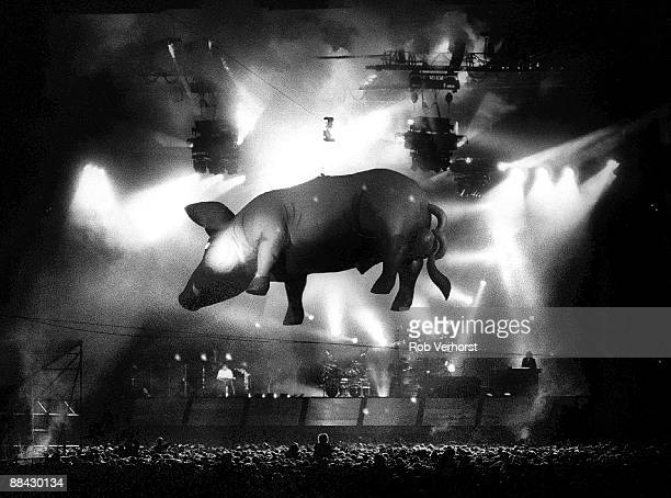 Photo of CONCERT and PINK FLOYD Pink Floyd performing on stage at Goffertpark in Nijmegen Flying inflatable pigs during the Another Lapse tour