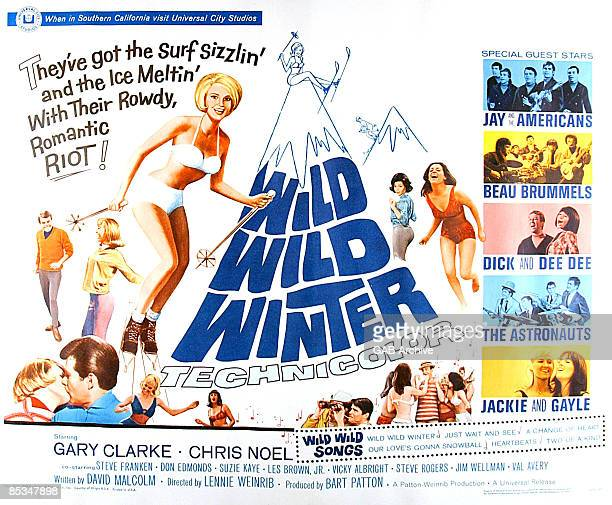 Photo of FILM POSTERS Poster for Wild Wild Winter