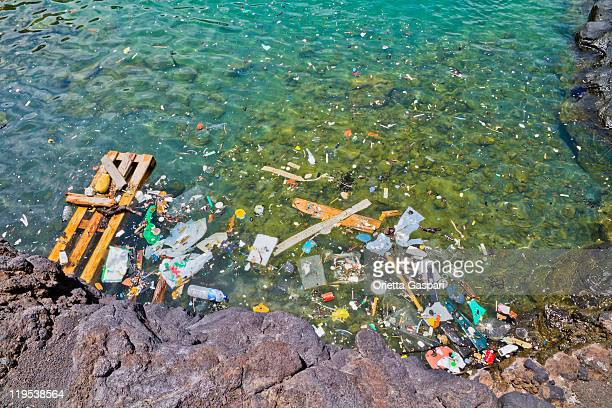 Photo of garbage floating in the shoreline water