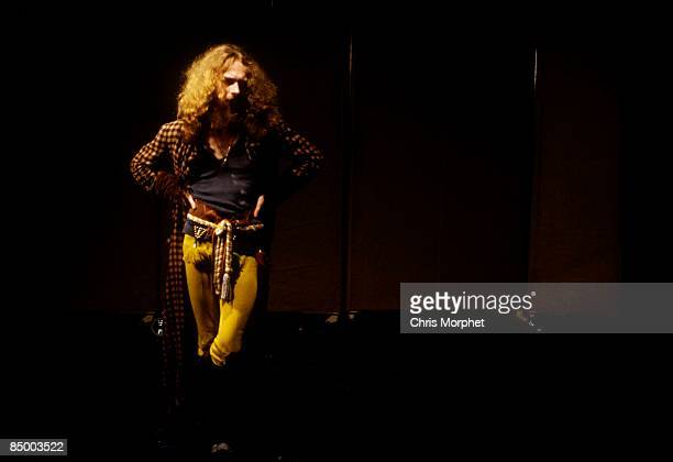 Photo of Ian ANDERSON and JETHRO TULL Ian Anderson performing live onstage