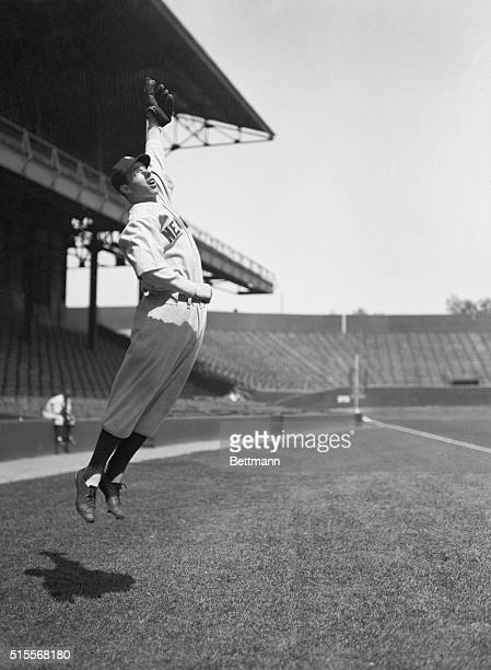 Photo of Joe DiMaggio leaping up to catch a throw during a practice throw-around.