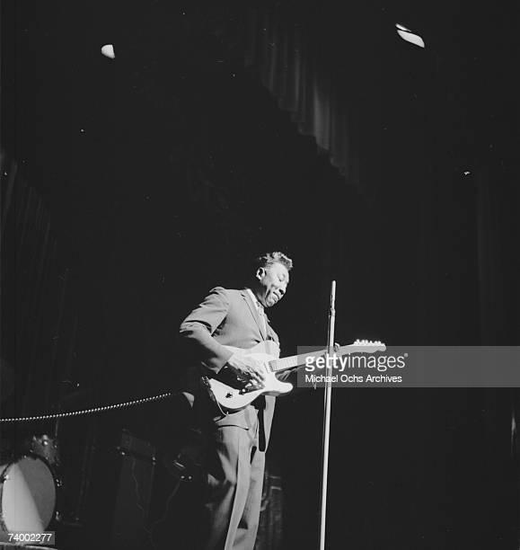 Photo of Muddy Waters