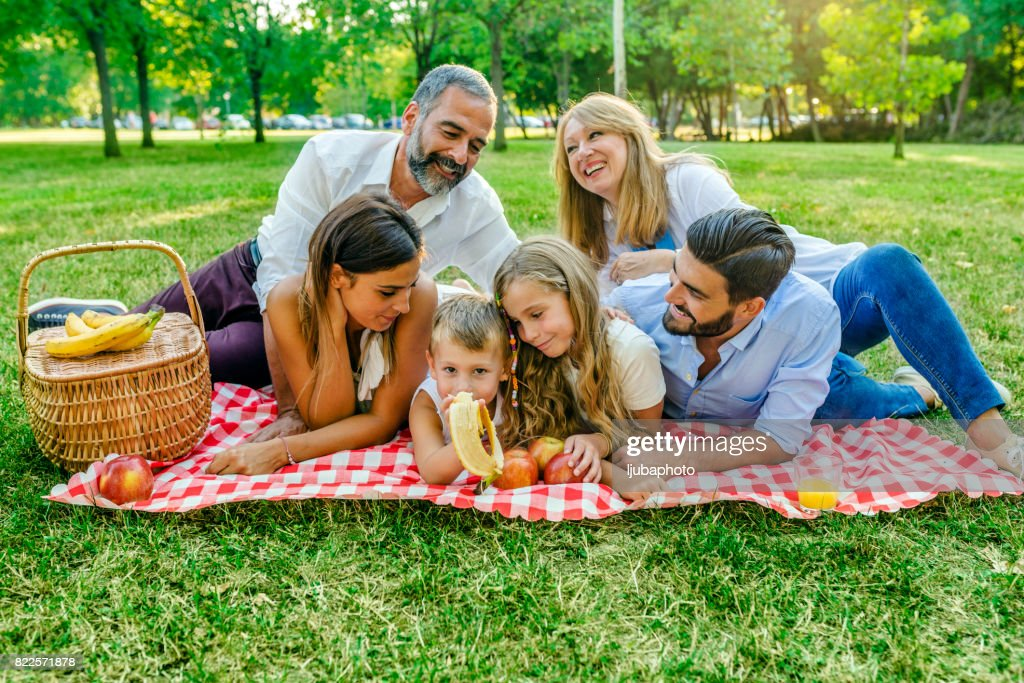 Photo of Multi Generation Family having Picnic in nature : Stock Photo
