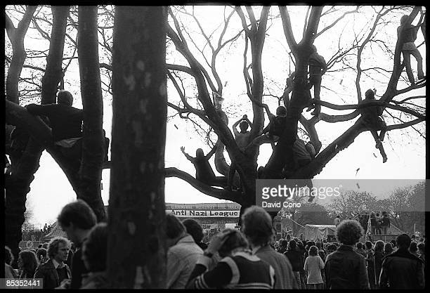 Photo of REGGAE Fans sitting in a tree at a Rock against Racism gig in Stockwell