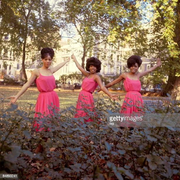 Photo of SUPREMES and Diana ROSS and Florence BALLARD and Mary WILSON Posed group portrait LR Florence Ballard Mary Wilson and Diana Ross