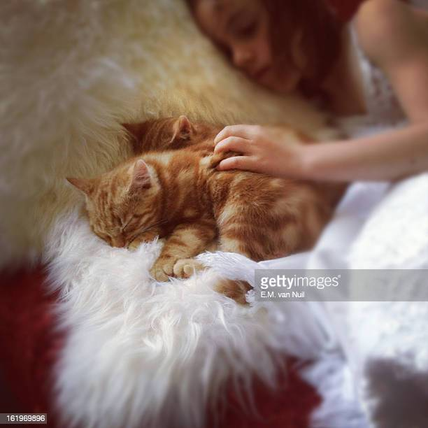 A photo of two red kittens and a little girl.