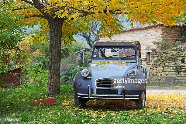 Français typique voiture sous un arbre