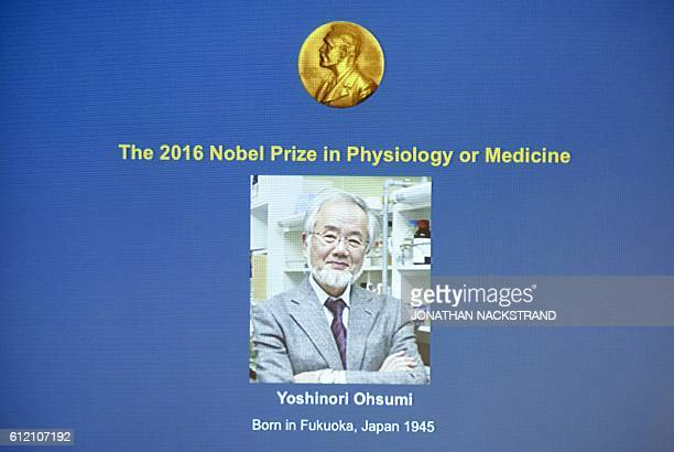 A photo of Yoshinori Ohsumi of Japan can be seen on the screen at the Nobel Forum in Stockholm after the announcement he won the Nobel Prize in...