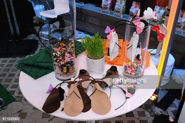 Photo props are seen during the celebration of the launch of Rachael Ray's Nutrish DISH with a Puppy Party on September 28, 2016 in New York City.