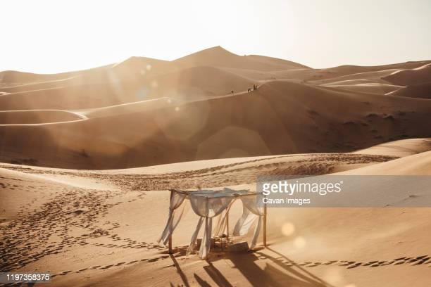 photo scenary in sahara desert at sunset - flussbett stock-fotos und bilder