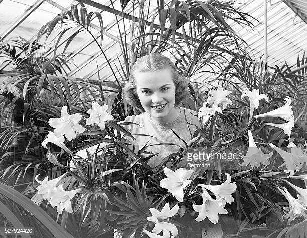 Photo shows a young woman standing in a hothouse surrounded by Easter Lilies Model Marjorie Solms Ca 1950s