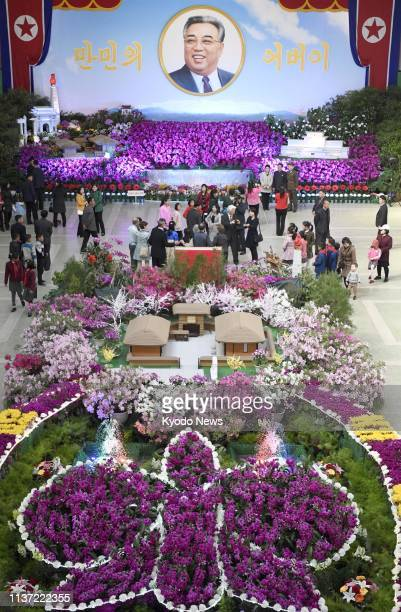 Photo shows an exhibition of Kimilsungia a purple flower of the orchid family named after North Korea's founder Kim Il Sung in Pyongyang on March 14...