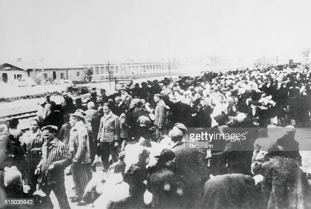 A photo taken by the Nazis in the early days of World War II shows a train load of prisoners destined for the Auschwitz Concentration Camp They are...