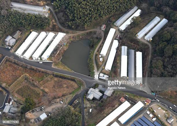 Photo taken from a Kyodo News helicopter on Jan 10 shows an aerial view of a poultry farm in Sanuki in southwestern Japan's Kagawa Prefecture where...