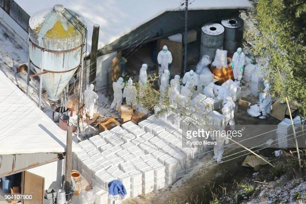 Photo taken from a Kyodo News helicopter shows officials working to cull chickens at a poultry farm in the city of Sanuki, Kagawa Prefecture on Jan....