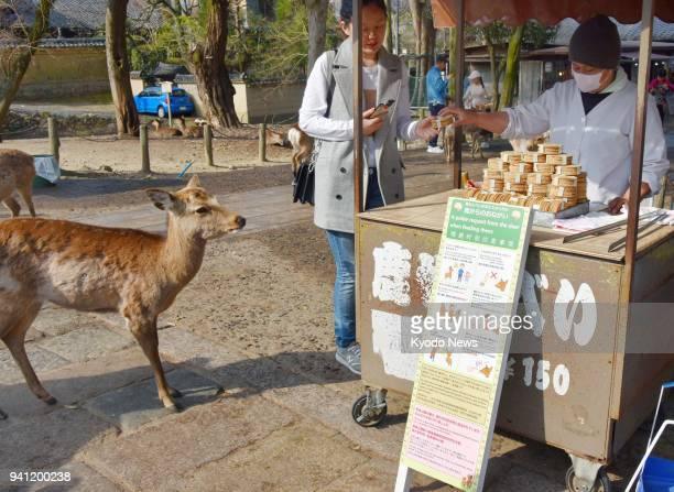 Photo taken on April 3 2018 shows an instruction panel at a stand where visitors can buy special crackers for deer inhabiting Nara Park in western...