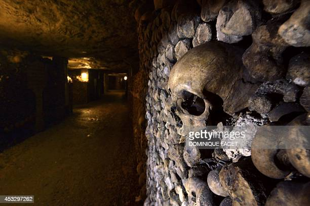 Photo taken on August 7 2014 at the Catacombs of Paris shows skulls and bones stacked and arranged These underground quarries were used to store the...